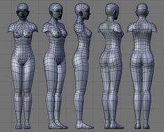 Kết quả hình ảnh cho female body topology