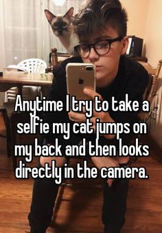 """  Anytime I try to take a selfie my cat jumps on my back and then looks directly in the camera."""