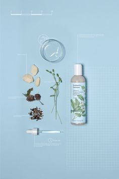 syntonics - The New York-based hair care brand Syntonics enlisted the creative agency FormNation to create botanical-themed branding for its range of products. City Poster, Poster S, Gfx Design, Layout Design, Graphic Design, Design Presentation, Skincare Packaging, Hair Care Brands, Visual Identity