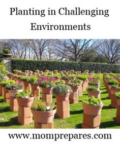 Planting in Challenging Environments