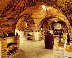 The House of Balaton's Wine at Keszthely. Big Lake, Wine Cellars, My Life Style, Central Europe, Wine Storage, Travel Planner, Eastern Europe, Log Homes, Wine Country
