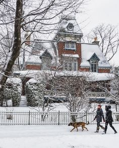 Montreal in winter.