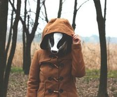 badger in the hood