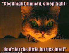 """""""Goodnight, human, sleep tight"""" #humor #funny"""