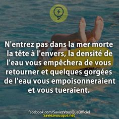 Le saviez vous 😰 Pour plus -> anais. Fact Quotes, True Quotes, Good To Know, Did You Know, True Facts, Entrepreneur Quotes, Info, Some Words, Things To Know