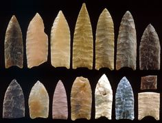 15 Goshen points from the Mill Iron, MT site (casts of originals)