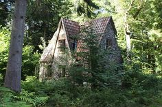 Sweet little cottage in the woods Forest Cottage, Woodlands Cottage, Witch Cottage, Fairytale Cottage, Cute Cottage, Cottage In The Woods, Witch House, Forest House, Cabins In The Woods