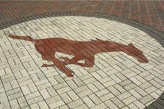 SMU Southern Methodist University Mustangs - brick logo a football venue - Gerald J. Ford Stadium