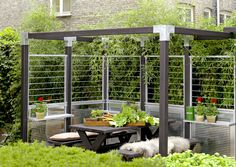 Big din egen pergola og pynt det med et flot hegn fra PLUS Pergolas For Sale, Privacy Walls, Pergola Curtains, Terrace Design, Pergola Designs, Pergola Plans, Garden Planning, Garden Inspiration, Beautiful Gardens