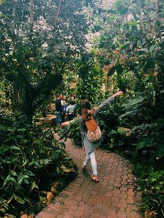 Atlanta Botanical Gardens Photography Ideas  ig~ jessicaclaark & vsco~ jessicaclarrk