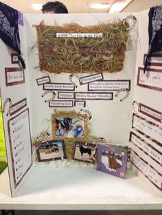 Reading Fair Non-Fiction Horses Science Fair Projects, School Projects, School Ideas, Reading Fair, Reading Boards, Teacher Helper, Nonfiction, Literature, Author