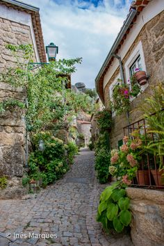 Beautiful street in Monsanto, Portugal. Here, the houses made of rock merge with the rocky mountain. Colourful flowers adorn this tiny village.