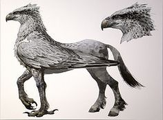 Hippogriff (Steven Vacher) Tags: film harry potter harrypotter warnerbrothers savage hippogriff savagephotography