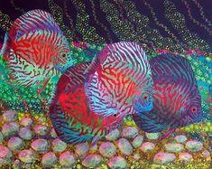 知っておきたい世界の奇妙で美しい魚13選(カラフル種)   ailovei