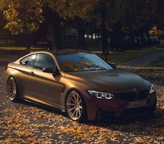 BMW F82 M4 bronze fall