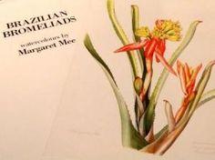 Margaret Mee - Brazilian Bromeliads