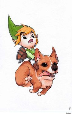 """Link's new steed. Probably from this legend: Pembrokes should have a """"fairy saddle"""" marking on the side of their shoulders caused by changes in the thickness, length and direction of hair growth. The phrase """"fairy saddle"""" arises from the legend that Pembroke Welsh Corgis were harnessed and used as steeds by fairies. Pretty much adorable."""