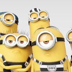 Swag!!! . . . . . #minionstime #minionslove #minionsbanana #minionsforever #minionsrule #minionsrock #minionsfan #minionslille #minions #minionslover #minionsmovie #minionsmania #instaminion #instaminions #loveforminions #minionscraze #minioncollection #iloveminions #loveminions #minionstagram #despicablememinions #despicableme3 #meltheminion #minionswag #minionstyle #minionstuff #minionsparty #minionstheme #minionsfamily