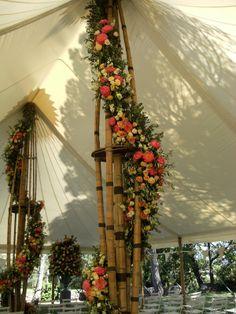 Scott Pheffer's wedding by Nikki Tibbles wild at heart