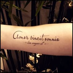 Love conquers all tattoo quote temporary by SharonHArtDesigns