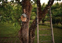 Entourez vos troncs d'arbre de guirlandes lumineuses solaires dans le jardin Home Design Diy, House Design, Outdoor Lighting, Outdoor Decor, Outdoor Flowers, Beautiful Gardens, Outdoor Structures, Plants, Blachere Illumination