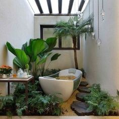 Tropical bathroom with plants and stepping stones. Gorgeous!