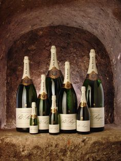 Champagne bottle sizes and the glasses they hold Churchill, Champagne Bottle Sizes, Pol Roger Champagne, Big Bottle, French Wine, Italian Wine, Sparkling Wine, Red Wine, Cool Things To Buy