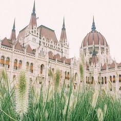 Özlediğim doğrudur 🍃 Missed you #Budapest 💚 #postcardsfrombudapest 🇭🇺