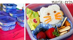 Lion Birthday Party - Lion Bento Lunches