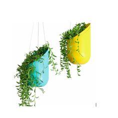 Dwell hanging planters. (Soda bottles?)