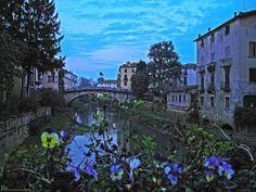 Foto di Vicenza - Comune, Municipiodi Vicenza e città, Veneto