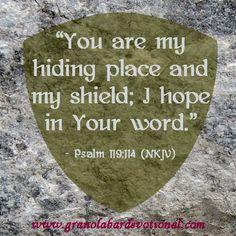#rt #teamJesus  Psalm 119:114 http://www.sdahymnal.net/
