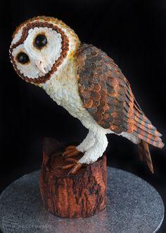 Cakecrumbs' Tasmanian Masked Owl Cake 03