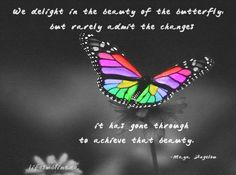 """We delight in the beauty of the butterfly, but rarely admit the changes it has gone through to achieve that beauty."" ― Maya Angelou"