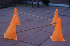exercises with cones — incl. cavaletti exercises, good for indy's hips/back end awareness
