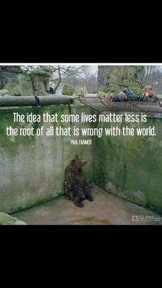 The idea that some lives matter less is the root of all that is wrong with the world. --Paul Farmer And on top of it society teaches children that it's supposed to be like that. Animals And Pets, Cute Animals, Zoo Animals, Vegan Animals, Wild Animals, Stop Animal Cruelty, Mundo Animal, Animal Welfare, Belle Photo