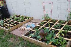 Square Foot Gardenin