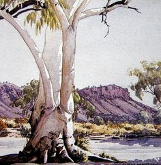 Albert Namatjira, Ghost Gum, watercolour on paper, signed lower right, 35 x 35 cm Aboriginal History, Aboriginal Artists, Aboriginal People, Indigenous Australian Art, Australian Artists, Landscape Art, Landscape Paintings, Australian Painting, Paintings I Love