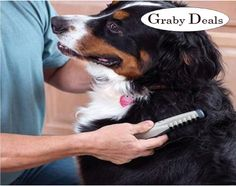 If anyone searching for best online site for #pet #grooming items, then visit www.grabydeals.com.
