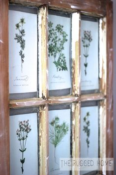 I've been seeing these salvaged windows with botanical prints in them everywhere. The thing I love about them is that they're old, they're chippy, they're imper…