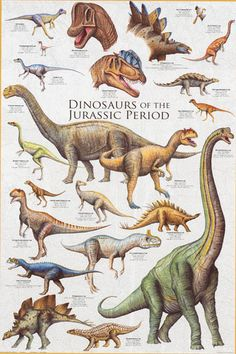 Dinosaurs of the Jurassic Period Education Poster 24x36 – BananaRoad