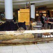 Sunridge Mall - 1