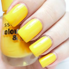 Essence Colour & Go Wanna Be Your Sunshine Swatches & Review