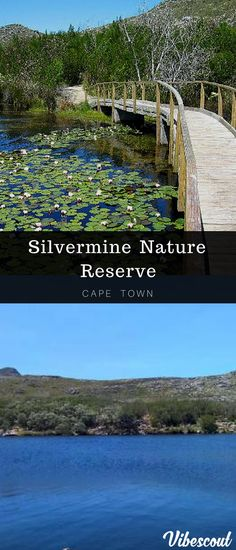 Silvermine is an immensely popular destination for family outings and picnics. It isn't as far away as Cape Point and the entry fee isn't as high. Hiking Spots, Hiking Trails, Visit South Africa, Forest Waterfall, Table Mountain, Family Outing, Nature Reserve, Africa Travel, Far Away