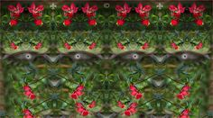 Pierino Palotti Digital Art Siti di riferimento: Twitter:https://twitter.com/pierinopalotti Facebook:https://www.facebook.com/pierino.palotti  Produzione Impianti di Sollevamento Leader sul mercato dal 1974 per qualità e sicurezza del pro