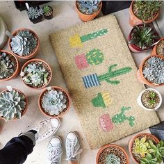Cactus by @ktandbiddy at @simplysucculentsaustralia