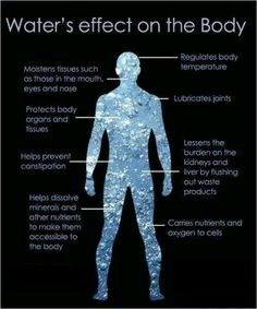 Water is crucial for the chemical reactions in the body. Without enough-half your weight in oz-the body just won't work. And the cries you hear come in the form of gastritis pain, joint pain, autonomic disfunction, muscle pain, weakness, dementia, ect. Before it gets that severe it starts as just achy, tired, listless, nausea, and/or brain fog, being absent minded or forgetful.