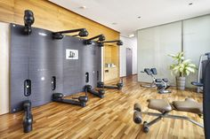 Fitness Superior Hotel, Hotel Spa, Luxury, Fitness, Modern, Furniture, Home Decor, Trendy Tree, Decoration Home