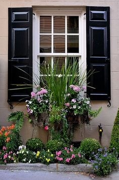 Backyard privacy landscaping window boxes 58 ideas for 2019 Privacy Landscaping, Backyard Privacy, Garden Cottage, Home And Garden, Green Shutters, Garden Windows, Window Boxes, Garden Styles, Dream Garden