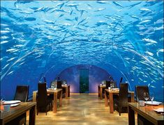 Under Water Restaurant (Planning to build one of these in Belize)